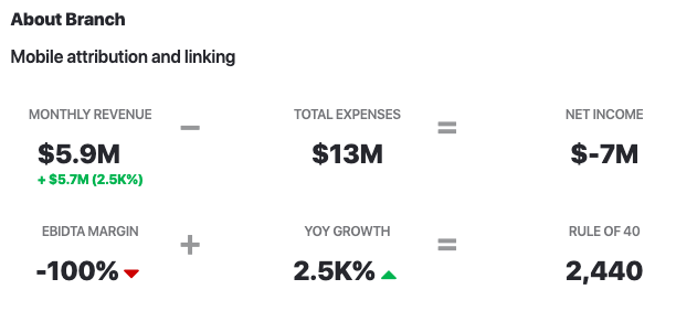 Branch.io Revenue vs Expenses 2020